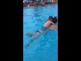 Dolphin ?❤️
