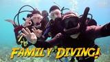 Family Diving in Bonaire JONATHAN BIRD'S BLUE WORLD