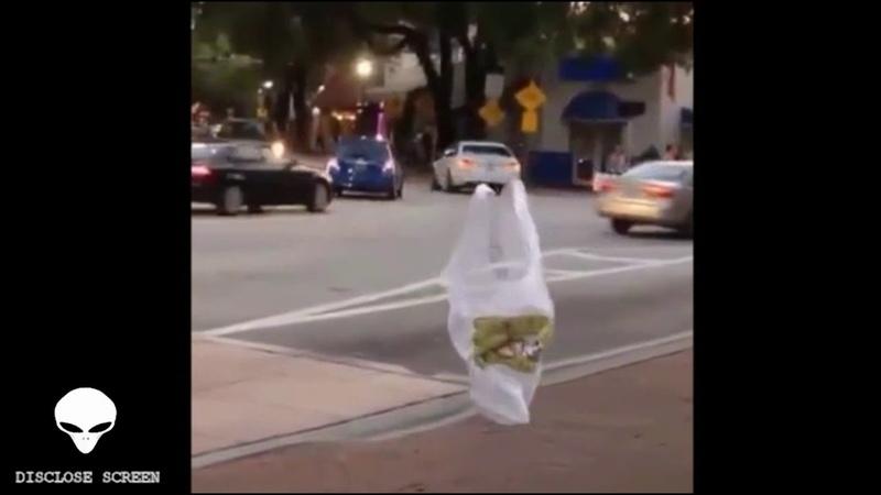 A walking plastic bag lol Wtf (Disclose Screen)