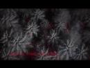 Don Diablo - Survive feat. Emeli Sandé Gucci Mane Lyric Video