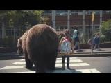 Родителей заменили дикими животными