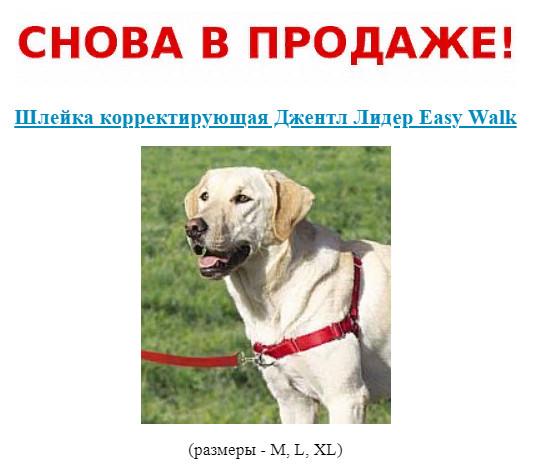 https://pp.userapi.com/c852320/v852320103/95071/kcLp0LdMie4.jpg