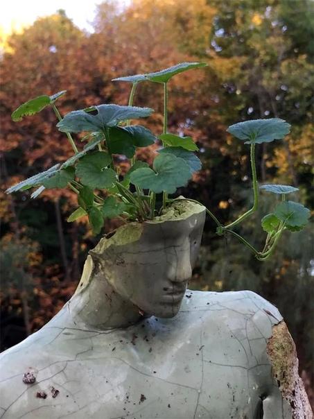Emil Alzamora, Эмиль Альзамора Этот скульптор из Перу. Родился в Лиме в 1975 году. Он создает зрелищные скульптуры из различных материалов, работает с бронзой, гипсом, бетоном, и другими