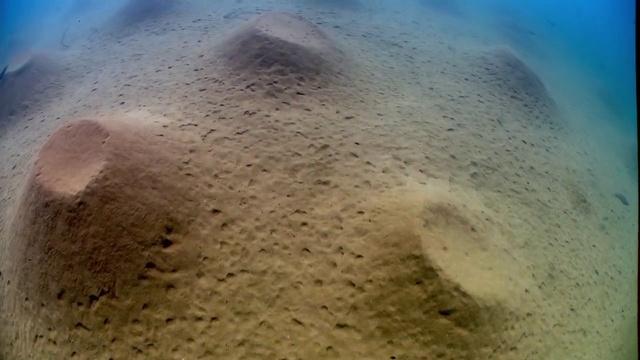 BBC Планета Земля Пресная вода