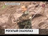 В Челябинской области сотрудники МЧС провели настоящую спецоперацию по спасению барана