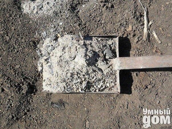 Зола – натуральное минеральное удобрение В чём её положительные свойства? 1. Зола питает растения. Азота в ней нет, но содержится до 30 элементов: калий, кальций, магний, железо, кремний, фосфор, сера, бор, марганец и др. Зола может заменить фосфорно-калийное удобрение. При этом в древесной золе и в золе, полученной от сжигания соломы, содержится разное количество элементов. В 100 г древесной золы (1 стакан объёмом 200 гр) содержится 3 г фосфора, 8 г калия, 25 г кальция. Зола соломы содержит…