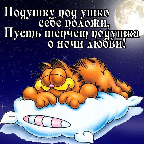спокойной ночи (источник: gofazenda)