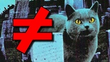 Pet Sematary - What's the Difference