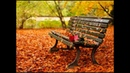 ВОТ ЭТО ПЕСНЯ ! ПОСЛУШАЙТЕ ЛЮБОВЬ и НЕЖНОСТЬ......Одиноким стал тот парк !