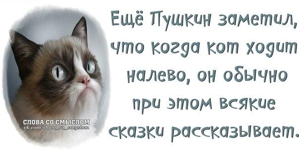 http://cs416725.vk.me/v416725573/6a4b/f2WqdKXLvg4.jpg