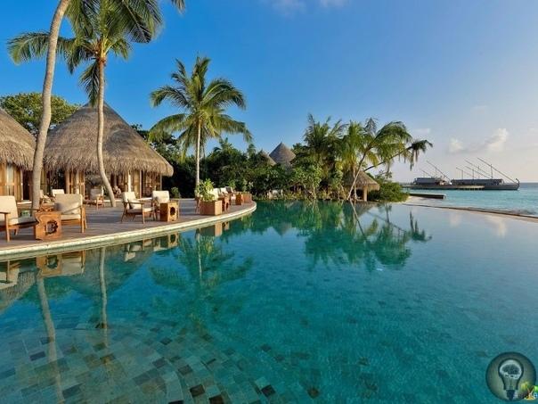 Отдых на Мальдивах: какой остров выбрать Территориальная организация на Мальдивах непростая. Вся страна делится на атоллы, то есть на группы островов, а они, в свою очередь, бывают трёх видов: -