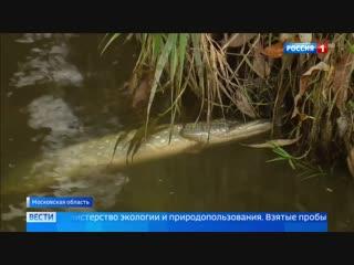 Экологическая катастрофа в Подольске
