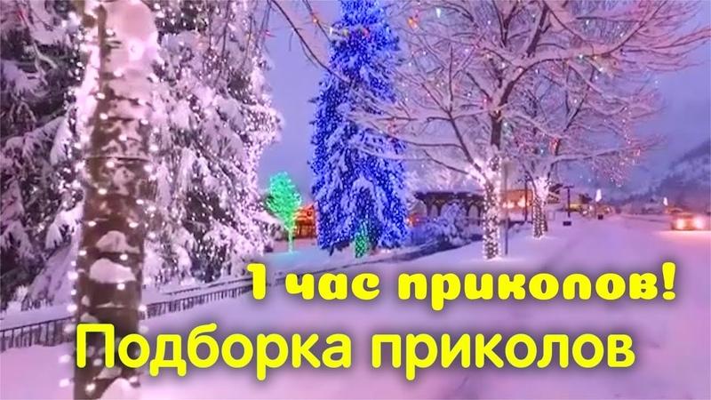 Лучшие приколы декабря Подборка приколов 2018 1 Час приколов