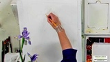 Watercolor Techniques with Janet Rogers - Painting an Iris - Part1