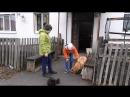 Акция Человек собаке - друг