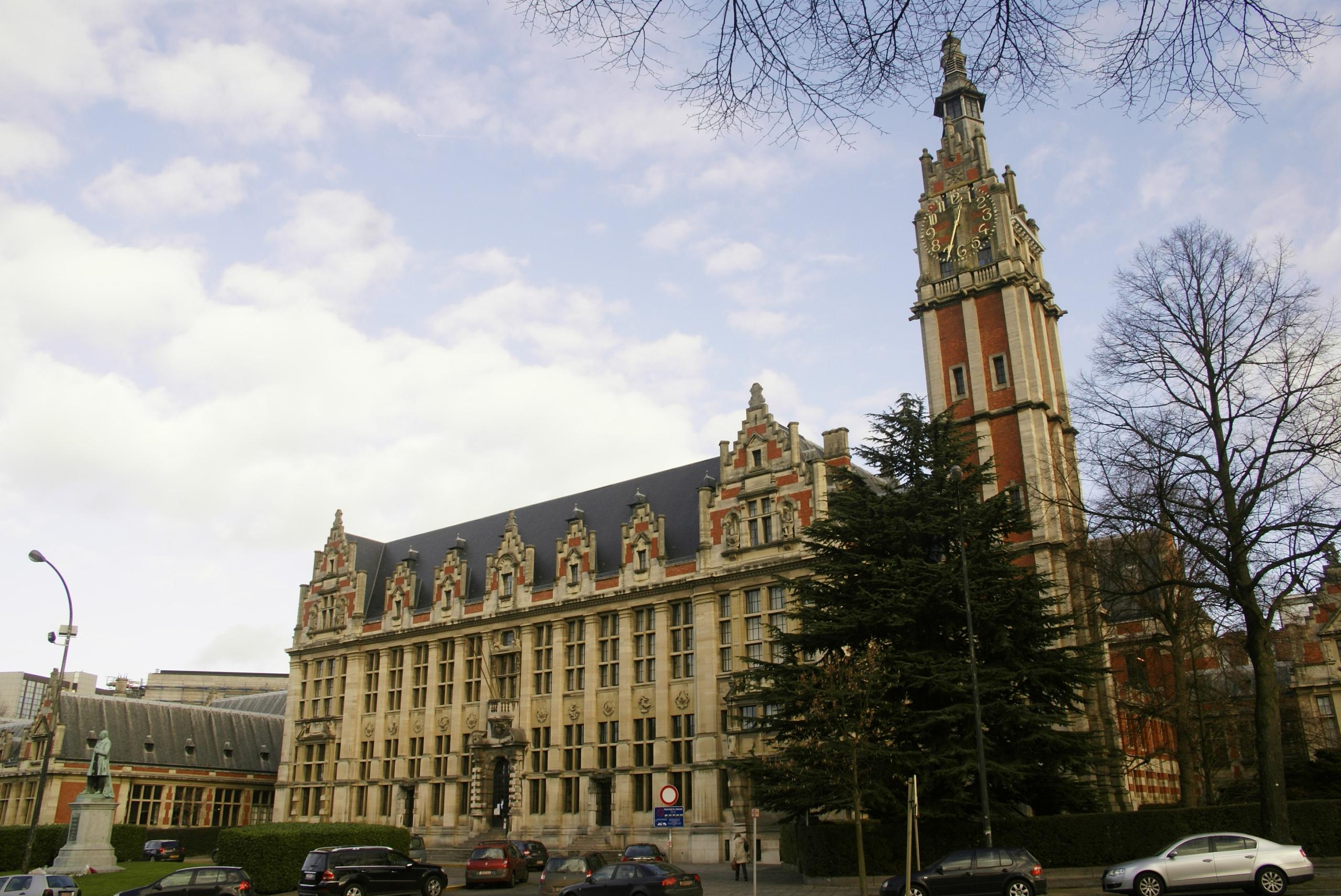 В Бельгии восьмилетний мальчик закончил школу и поступает в университет