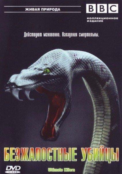 Безжалостные убийцы (2001)