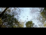 «Соник» (2013): Фильм