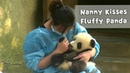 Nanny Can't Give Enough Kisses To Dearest Panda Baby | iPanda