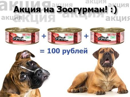 ХАБСОБАКА: Большое поступление знаменитых игрушек Гигви!!!!!! (Хабаровск) - Страница 5 X1bQfYTLqtQ