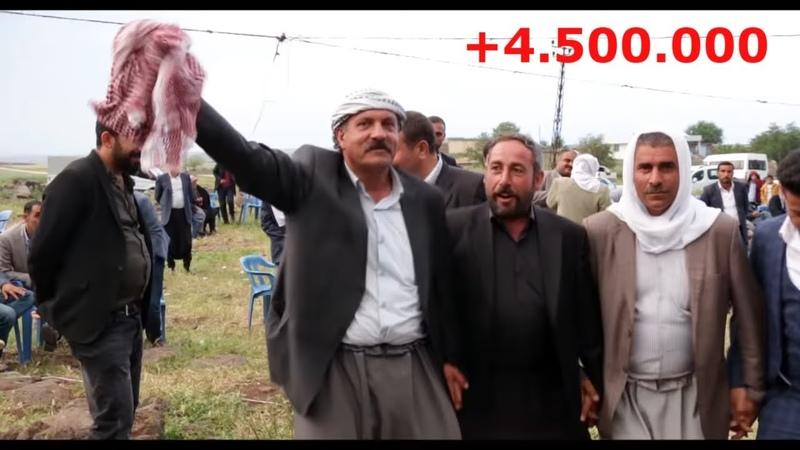 BU ADAMLAR HARİKA HALAY ÇEKİYOR KOMA WELAT ZURNALI ŞEVKO FOTO EVİN SUNAR...