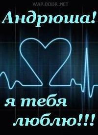 Андрей я люблю тебя открытки 27