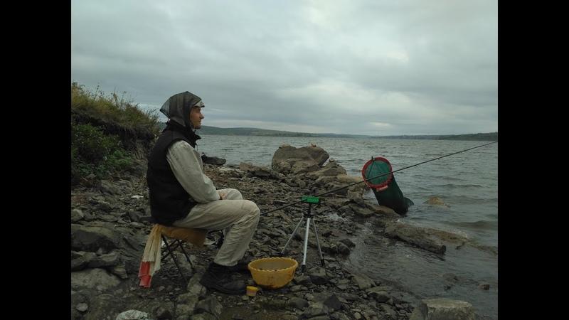 Рыбалка на водохранилище в дождь. Рыбалка осенью. Ловля подлещика на сало, горох и кукурузу Часть 1