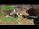 Охота в якутии - подборка 1 Hunting in yakutia - compilation.