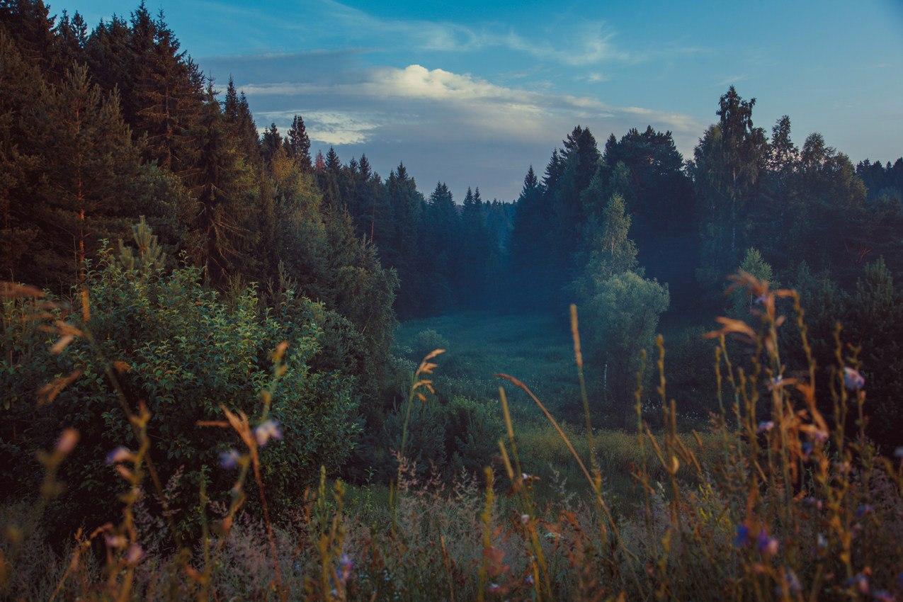 Роскошные пейзажи Норвегии - Страница 6 K215IIsXsRU