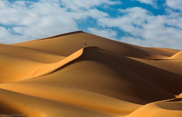 Пустыня Абу-Даби завораживает...