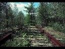 Поездка на заброшенную железную дорогу Угра Екимцево Часть 2