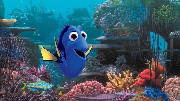 «В поисках Дори» Pixar уже вроссийском прокате. КиноПоиск п