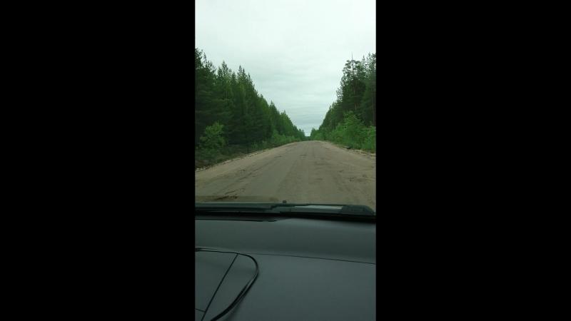 дорога до госграницы