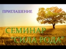 PLEXUS TREAR. Приглашение на семинар СИЛА РОДА