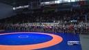 Борцы греко римского стиля из пяти стран собрались в Бердске на юбилейный турнир