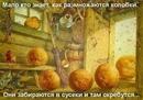 Андрей Самолёт фото #45