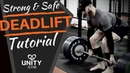 Deadlifts - How To Perform The Barbell Deadlift [Tutorial]