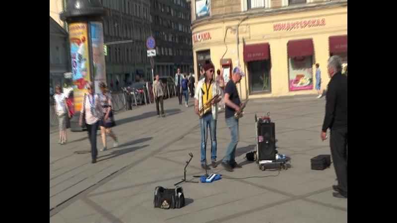 ВО. Прогулка по Ваське 00069