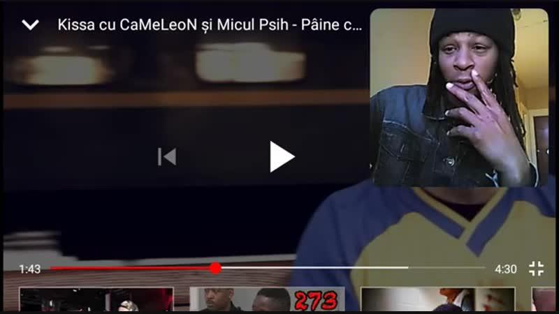 Reacția la Videoclipul Pâine cu Sare