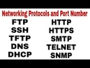 Networking Protocols Port Number in Hindi Application Layer Protocols