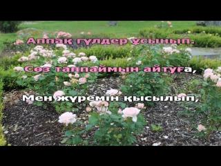 Ақбота Керімбекова - Аппақ гүлдер