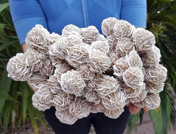 """Большое скопление кристаллов """"розы пустыни"""", Чиуауа, Мексика"""