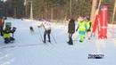 Бердск принимает чемпионат области по ездовому спорту