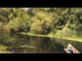 Чемпион по прыжкам в воду с тарзанки