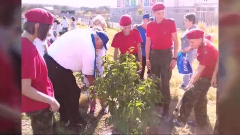 Сегодня проходит, Экологическая акция  Наш лес. Посади своё дерево  По инициативе губернатора Московской области при поддержки