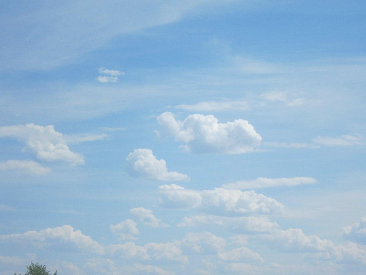 А небо там - голубое-голубое... (25.06.2013)