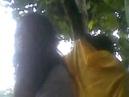 Maitriya Guru Maha Sambodhi Dharma Sangha _/\_