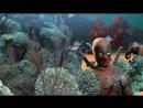 Дэдпул 2 Промо расширенной версии
