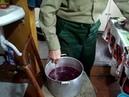 Виноградное вино. добавление сахара на литр сока. 2 этап.