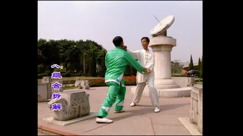 Pan Nam Ving Chun. Part 1.